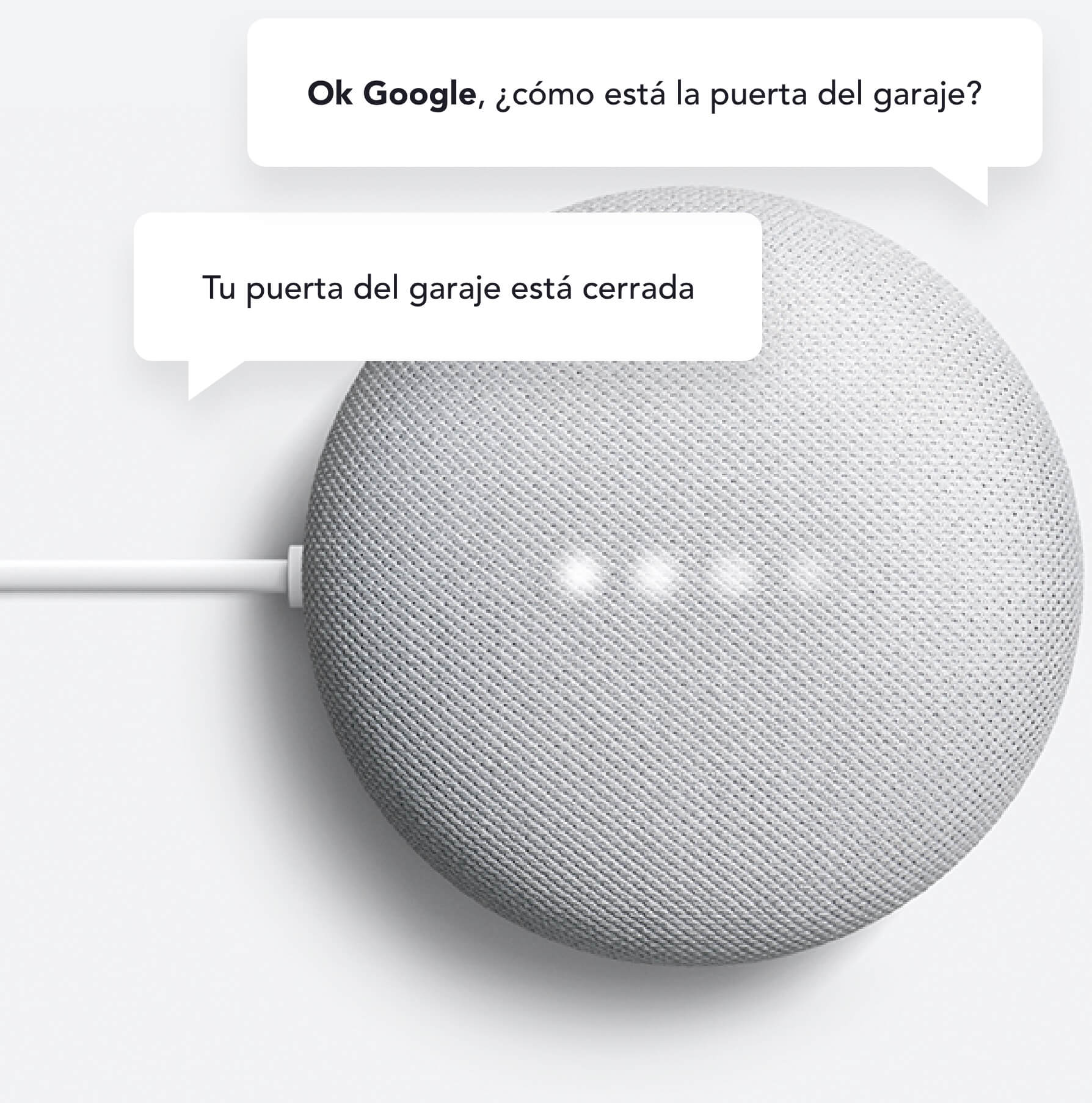 Google Home - Google Assistant